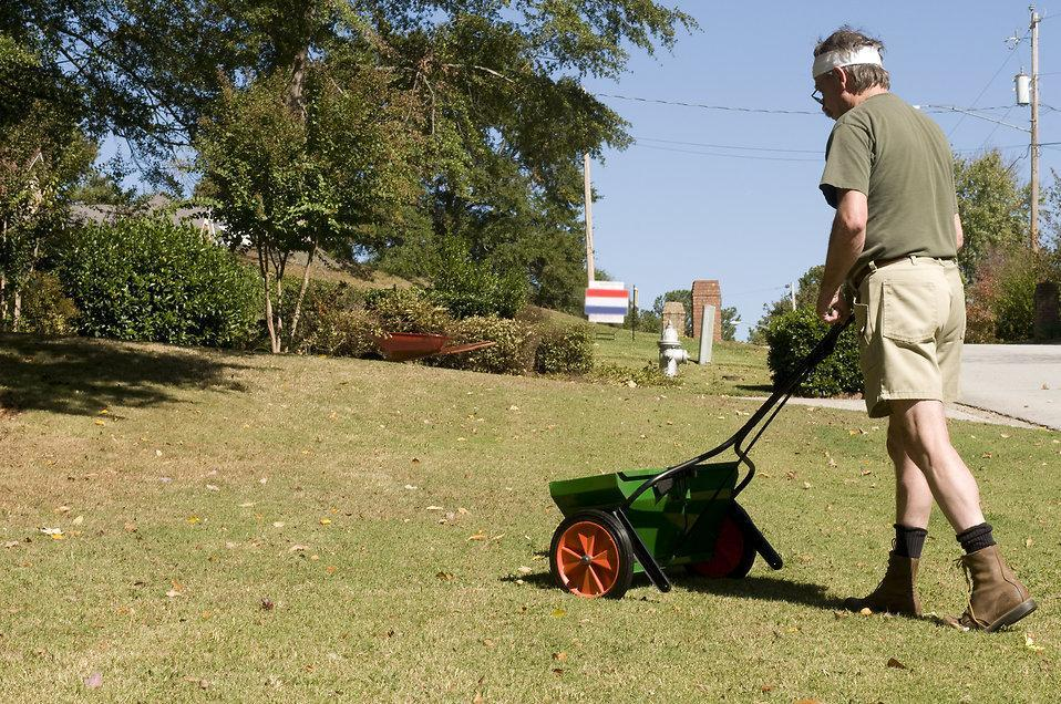 fertilizing South Carolina lawn